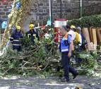 Portugal, de luto nacional por las víctimas de árbol caído en Madeira