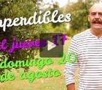 Agenda cultural de Navarra en vídeo hasta el 20 de agosto