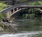 Pescadores y Guarderío Forestal realizarán estudios de las especies del Bidasoa