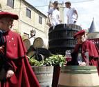 La DO Navarra recogerá 74 millones de kilos de uva, un 8% menos que en 2016