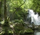 Un estudio analizará la afluencia y el perfil del turista en Navarra