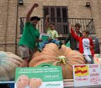 Una calabaza de Valtierra de 850 kg, récord de España