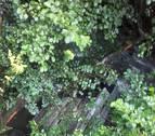 Herido un vecino de Atallu de 67 años al caer al río con su coche en Betelu
