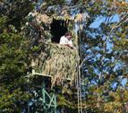 12 palomeros iniciarán el domingo la nueva temporada de caza con red en Etxalar
