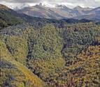 El cambio climático aumenta en 1,2° la temperatura de los Pirineos