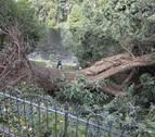 Al menos 9 muertos y 39 heridos por el temporal 'Xavier' en Polonia y Alemania