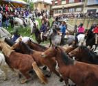 Qué hacer este domingo en Pamplona y Navarra