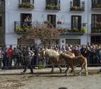 Alsasua acoge a 19 ganaderías de Sakana en la Feria de Ganado Caballar