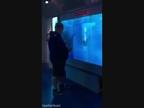 El sobresalto de un hombre que es 'atacado' por un tiburón conquista Internet