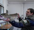 Encontrado un salmón de 9 kilos y un metro de longitud en Bera