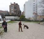 Cinco perros muertos por veneno desde 2013 en la Comarca de Pamplona