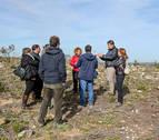 Gurelur insiste en sus críticas a la tala de pinos hecha en Tudela