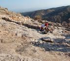 Recuperadas 315 piezas arqueológicas que se vendían en Internet