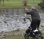 Pamplona quitará los huevos de las palomas para controlar su población