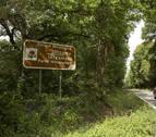 El calor y la falta de lluvia limitaron en octubre el desarrollo de setas en Ultzama