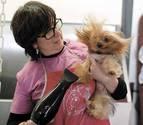 VÍDEO | Una mañana en una peluquería canina de Berriozar