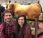 Un toro disecado por el pamplonés Javier Celay, premiado en Austria
