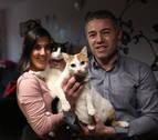 Con Roma y Thor, dos gatos adoptados, la familia son cuatro
