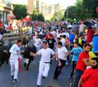 Dos empresas optan a organizar los festejos taurinos de fiestas de Tudela