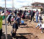 Los niños cirboneros plantan 24 árboles