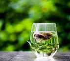 Beber té tres veces a la semana alarga la vida y la hace más saludable
