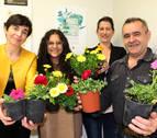 La primavera regresa al comercio de Estella con su campaña floral