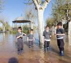 Expectación y daños por la riada en Tudela: testimonios de los vecinos
