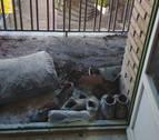 Extinguido un incendio en la terraza de un piso en la calle Julián Arteaga de Pamplona