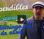 Agenda cultural de Navarra en vídeo hasta el domingo 22 de abril
