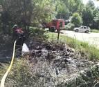 La quema de pelusa de chopo causa dos pequeños incendios en Navarra