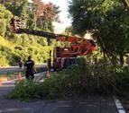 Un árbol caído obliga a cerrar al tráfico la cuesta de Beloso
