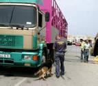 Amine, de 12 años: 1.500 kilómetros en los bajos de un camión hasta Tudela