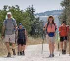 Visita guiada gratuita por el Camino de Santiago en Pamplona este jueves