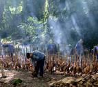 Zikiro jate en Zugarramurdi, un pueblo volcado en la tradición