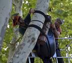Aumenta la presencia de murciélagos en el parque fluvial de la Comarca