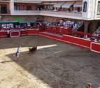 Localizado el toro que saltó el vallado y escapó de la plaza en Villafranca