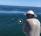 El susto de un tiburón blanco a unos pescadores se vuelve viral en Facebook