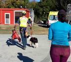La Guardia Civil rescata a una senderista y a su perra en el pico Codés