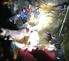 Rescatada una yegua caída en una sima de Aralar de 20 metros de profundidad