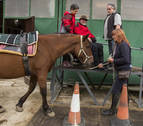 De la silla de ruedas al caballo