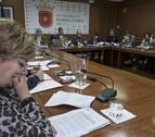 Un pleno de Estella sin temas locales se queda en mociones sobre Skolae y la jota