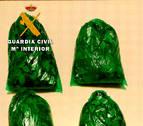 Incautado un alijo de 1.500 gramos de hojas de coca en el aeropuerto de Pamplona