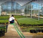 Un proyecto de bioeconomía circular generará hasta 15 empleos directos en Lumbier