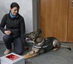 Denuncian el aplazamiento en el Parlamento del debate sobre los perros de protección