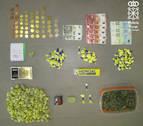 Detenido en Lodosa por un presunto delito de tráfico de drogas