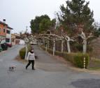 La CHE autoriza un embarcadero en El Bosquecillo de Andosilla