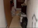 Una familia se encuentra su casa 'okupada' tras volver de un fin de semana fuera