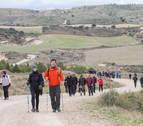 Más de 1.500 riberos, hacia al Castillo de Javier