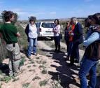 Firmado un convenio para minimizar los daños del conejo de monte en la Ribera