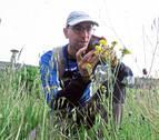 Un pamplonés detecta 403 especies de plantas en Ezkaba
